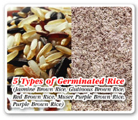 5 Types of Germinated Rice